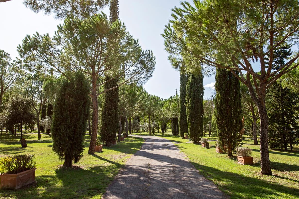 beautiful garden view image