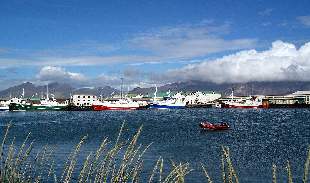Hofn Harbor town in South Iceland summer view