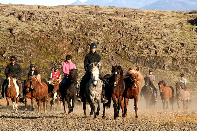 Horseback-riding-Icelandic-horses-in-Iceland.jpg