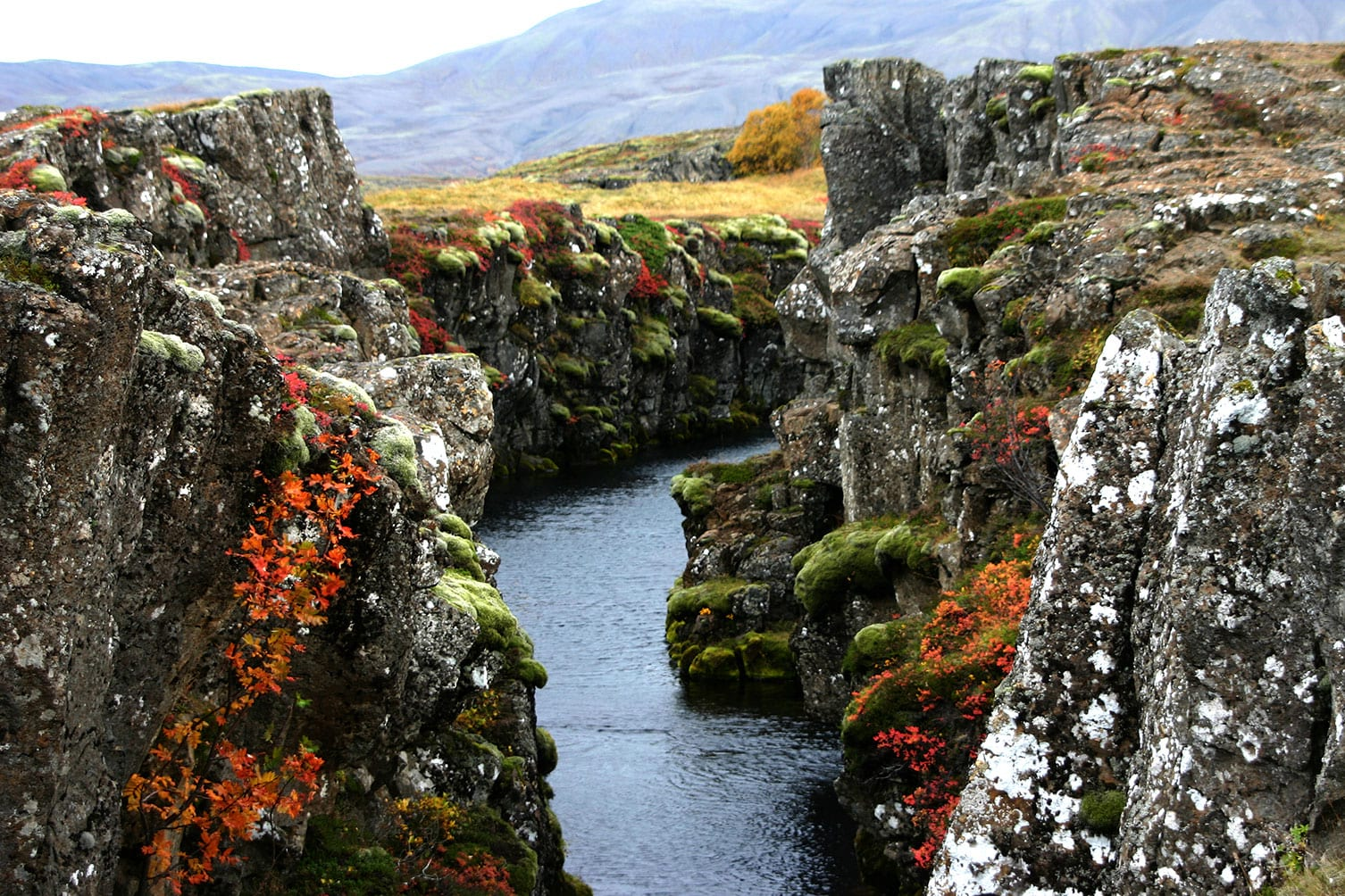 Beautiful Icelandic nature