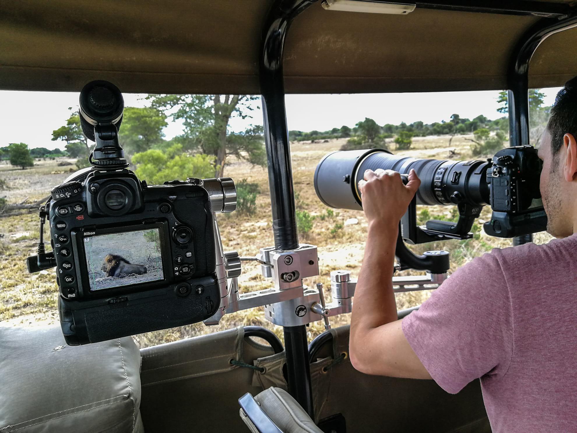 Kruger Park Wildlife Photographic Safaris